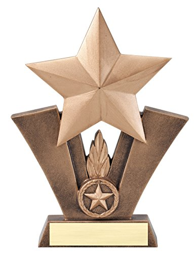 Etch Workz Customize Resin Casting Award - Radiant Star Series Resin Hockey Trophy - Engraved & Personalized Free (7-1/2