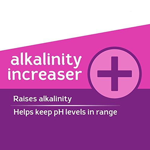 Hth Pool Balance Alkalinity Increaser 67009 Buy Online