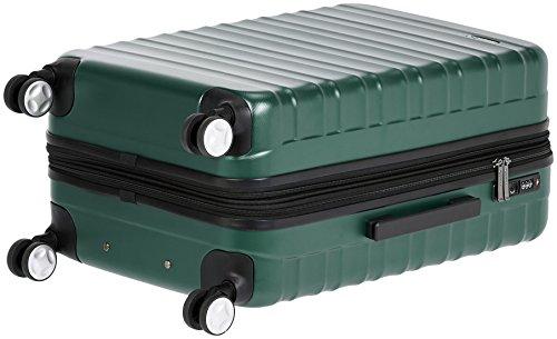 2f9f24de6 ... AmazonBasics Premium Hardside Spinner Luggage with Built-In TSA Lock -  2-Piece Set ...