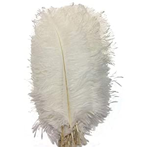 CENFRY 60pcs Ostrich Feathers 18-20inch Plumes for Wedding Centerpieces Home Decoration (White)