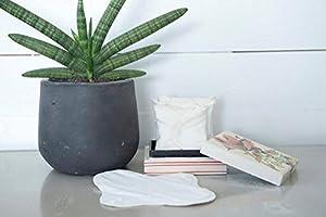 ImseVimse Set de 3 compresas lavables de algodón ecológico, 9x24,5 cm: Amazon.es: Salud y cuidado personal