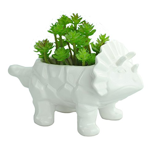 VanEnjoy 6 Inch White Cute Cartoon Triceratops Dinosaur Shape Ceramic Succulent Planter, with Drainage Hole, Bonsai Cactus Flower Pot