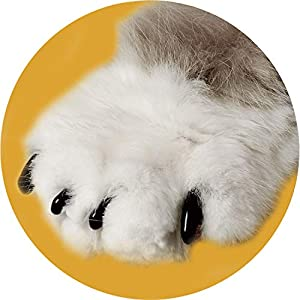 Soft Claws Clear Cat Nail Caps 20