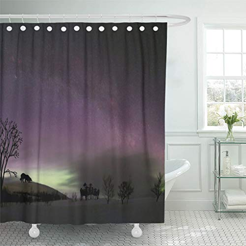 Semtomn Shower Curtain Puppy Look Border Collie Herding Dog Puppies Pets 66