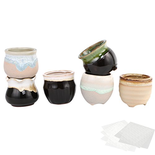 Happy Bonsai 6 Mini Ceramic Pots Small Succulent Planters + 6 Mesh Screens