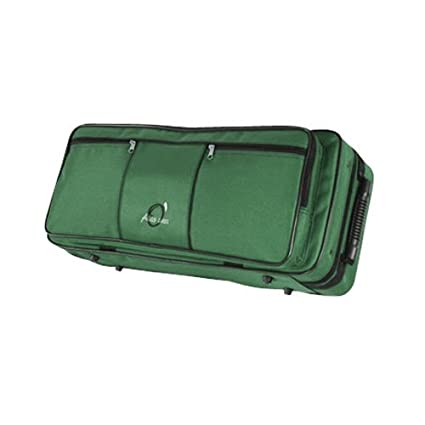 Amazon.com: ESTUCHE SAXO ALTO REF. 112 (62x26,5x15cm) Verde ...