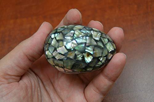 OutletBestSelling Polished Sea Shells \ Beach Shells PAUA Abalone Shell Inlay Egg Decor Display 2 1/4