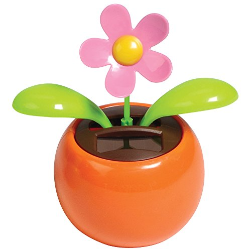 Solar Dancing Flower - Daisy, Mini