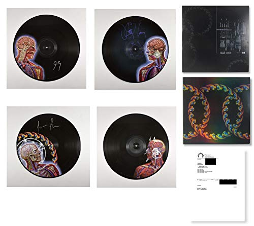 Top 3 recommendation lateralus tool autographed 2020