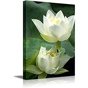 Amazoncom Canvas Prints Wall Art White Lotus Flower And Green