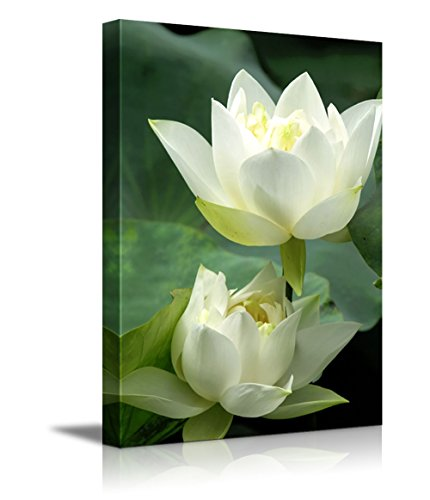 Canvas Prints Wall Art - White Lotus Flower and Green Lotus Leaf | Modern Wall Decor/Home Decor Stretched Gallery Wraps Giclee Print & Wood Framed. Ready to Hang - 24