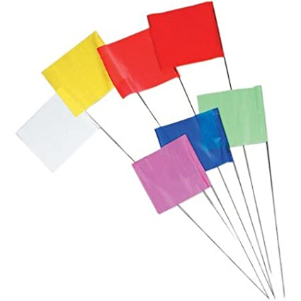 Blue Wire Flag Marks SCCS