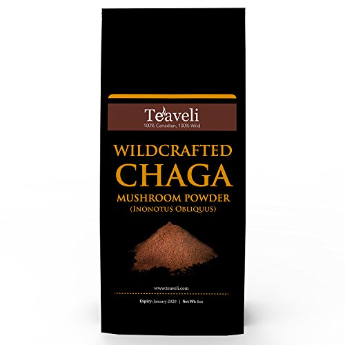 Premium Chaga Mushroom Powder & Tea| Bulk Pack| Organic, Ethically Wildcrafted & Handpicked f/Live Birch Trees in the Laurentian Forests of Canada| Wild Harvested - 6 ounces (170 grams)