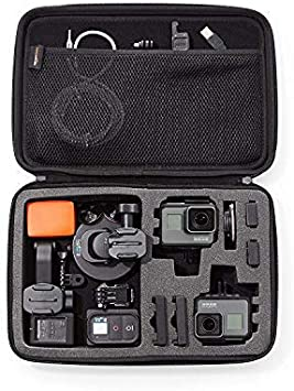 Amazon Com Amazon Basics Large Carrying Case For Gopro And Accessories 13 X 9 X 2 5 Inches Black Camera Photo