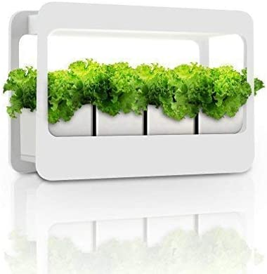 Amazon.com : GrowLED Plant Grow Light LED Indoor Garden Light, Kitchen Garden with Timer Function, 24V Low Safe Voltage, Ideal for Plant Grow Novice Or Enthusiasts, Various Plants, DIY Decoration, White Grow Light : Garden & Outdoor
