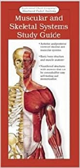 Muscular and Skeletal Systems: Study Guide: Anatomy and Physiology (Anatomical Chart Company's Illustrated Pocket Anatomy)