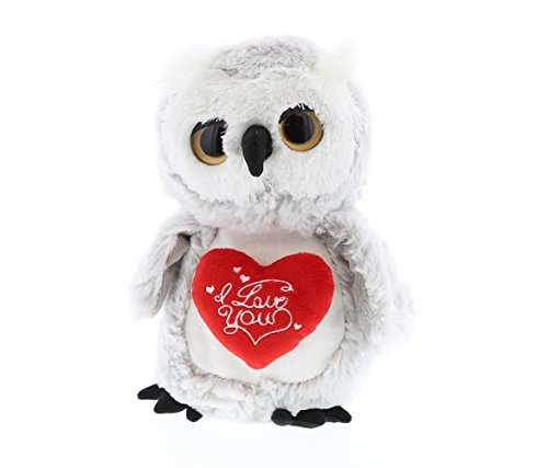 "DolliBu Cute Stylish Sparkling Eyes Owl ""I Love You"" Hea"