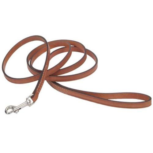 Circle T Tan Oak Leather Dog Leash - 6 ft. with a Width of 3/8 (Tan Aniline Leather)