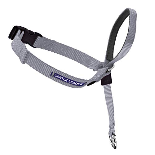 PetSafe Gentle Leader Head Collar with Training DVD, PETITE UNDER 5 LBS., SILVER