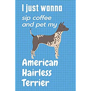 I just wanna sip coffee and pet my American Hairless Terrier: For American Hairless Terrier Dog Fans 23