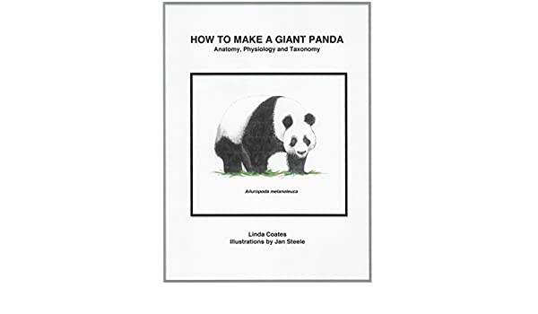 How To Make A Giant Panda Anatomy Physiology And Taxonomy Kindle