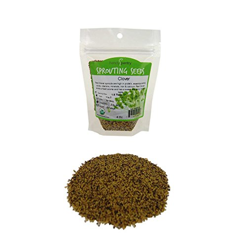 Handy Pantry Certified Organic Red Clover Sprouting Seeds - (4 Oz) Brand: Red Sweet Clover Seed for Sprouting, Gardening, Salad Greens, Hydroponics, Edible Seed, Food Storage & More
