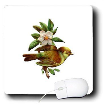 BLN Vintage Bird Illustrations Collection - Pretty Little Bird Perched on Branch of a White Flowering Tree - MousePad (mp_171361_1)
