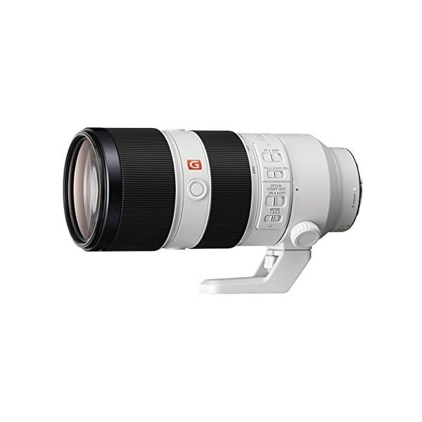 RetinaPix Sony SEL70200GM E Mount FE 70-200 mm F2.8 GM OSS Lens