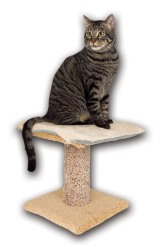 KandH Pet Products 12-Inch by 16-Inch Cat Bed Thermo-Kitty Furniture Warmer, My Pet Supplies