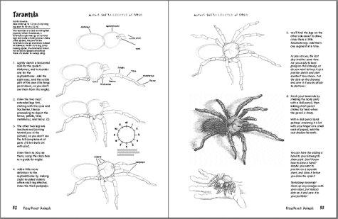 Draw Desert Animals Learn To Draw Doug Dubosque 9780939217267