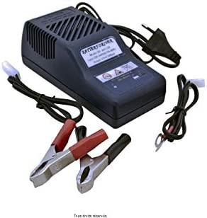 Cargador de baterías automático para moto, scooter y quad Kyoto de 12V 1000mA, tipo Optimate.