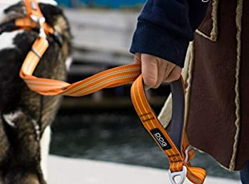 DOG Copenhagen FL-HG - Correa para Manillar de Bicicleta, Color ...