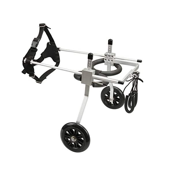 [, Ships from Ca, USA] Anmas Home Adjustable Dog Wheelchair for Small Dogs Hip Height 13″-16″, Wheelchair for Back Legs Rehabilitaion Click on image for further info. 2