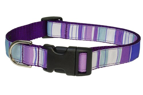 Picture of Sassy Dog Wear 18-28-Inch Purple/Multi Stripe Dog Collar, Large