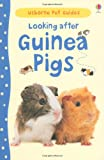 Looking After Guinea Pigs (Usborne Pet Guides)