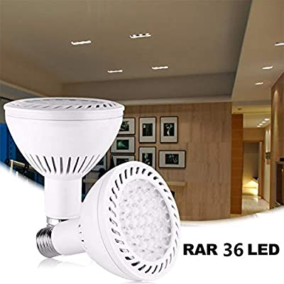 Lanlan Light Bulb LED Light Bulb PAR30 36W Indoor/Outdoor LED Flood Light Bulb E27 100-240V