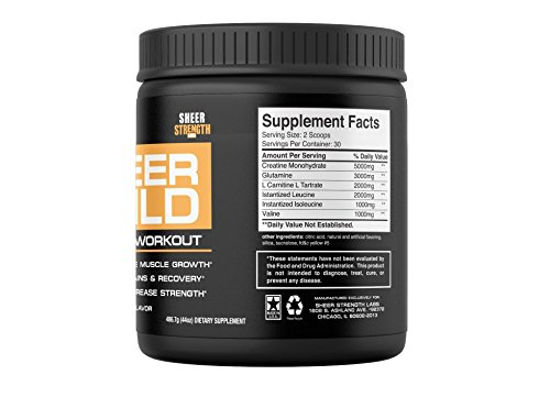 SHEER STRENGTH RECOVERY: Build Muscle With The #1 Best Post Workout Supplement Science Backed Formula With Premium BCAAs, Creatine Monohydrate, Glutamine, and L Carnitine 486 grams, 30 servings