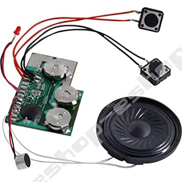 No1gs 10 second sound voice recordable module for greeting cards no1gs 10 second sound voice recordable module for greeting cards make your own sound m4hsunfo