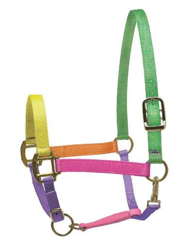 Perri's Nylon Super Halter , Multi Neon, Pony
