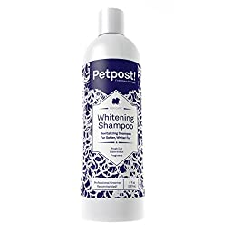 Petpost | Dog Whitening Shampoo - Best Lightening Treatment for Dogs with White Fur - Soothing Watermelon Scent - Maltese, Shih Tzu, Bichon Frise Approved - 8 oz.