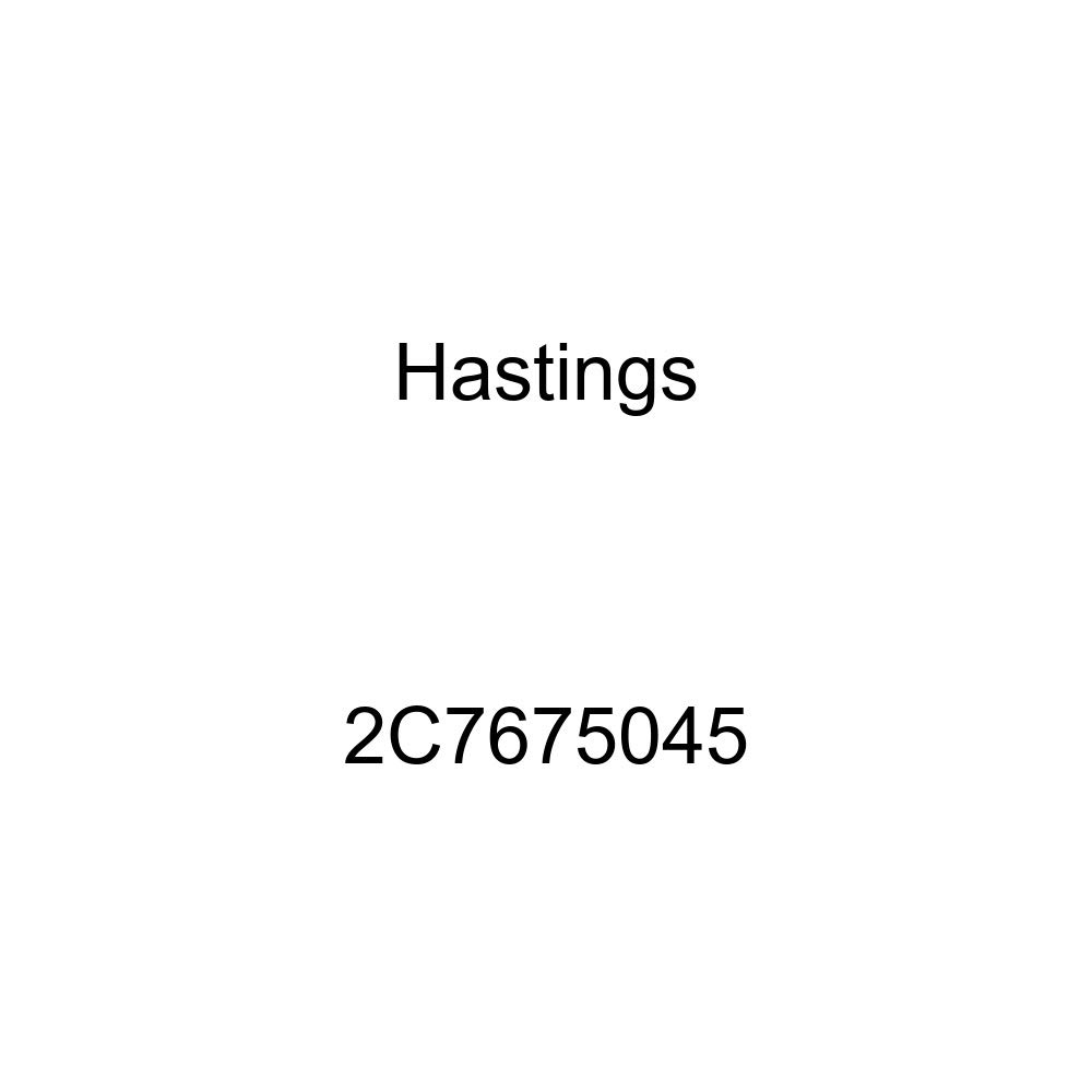 Hastings 2C7675045 2-Cylinder Piston Ring Set