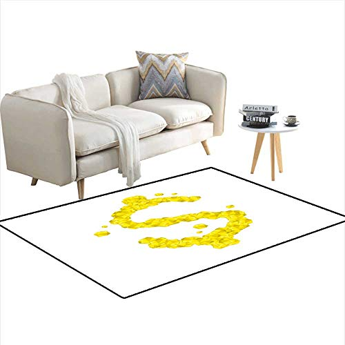 Extra Large Area Rug Alphabet Crystal Diamond D Virtual Set Currency USD United States Dollars Symbol Illustration Gemstone Concept Design ye ()