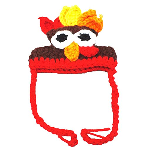 Sannysis Christmas Decorations, Pet Turkey Hat Cute Pet