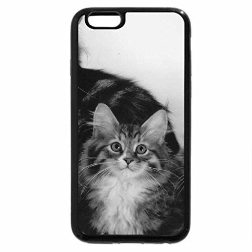 iPhone 6S Case, iPhone 6 Case (Black & White) - Mothre cat and kittens