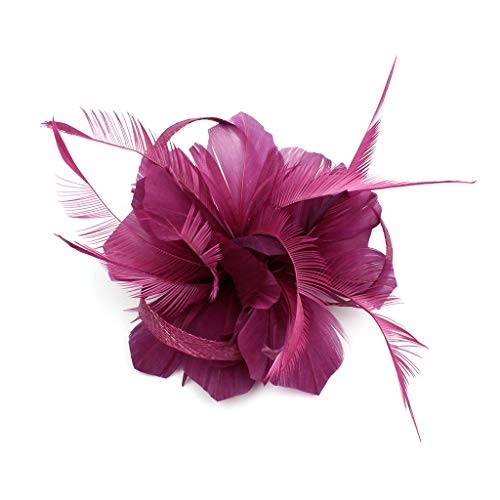Fascinators Hats Tea Party Feather Headwear Kentucky Derby Hair Clip Hat for Cocktail Ball Wedding (Purple)