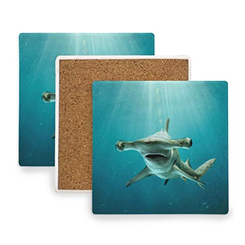 Large Square Drink Coasters,Shark Photo Ceramic Thirsty Stone With Cork Back Cup mats Protect Your Furniture From Spills,Scratches,Water Rings and Damage 2 pcs