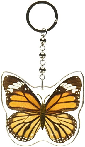 REALBUG Common Tiger Butterfly Wing Key Chain (Tiger Real)