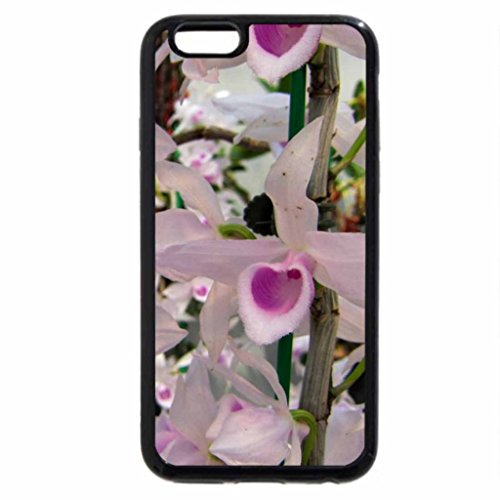 iPhone 6S / iPhone 6 Case (Black) Pink heart-shaped orchids