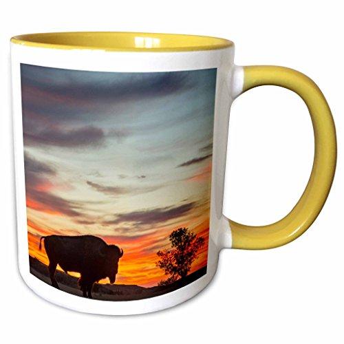(3dRose Danita Delimont - Chuck Haney - Bisons - Bison silhouetted against sunset,Theodore Roosevelt NP, North Dakota - 15oz Two-Tone Yellow Mug (mug_189990_13))
