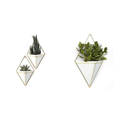- Umbra Trigg Hanging Planter Vase & Geometric Wall Decor Container - Great for Succulent Plants, Air Plant, Mini Cactus, Faux Plants and More, White Ceramic/Brass (Set of 3) Small (2) and Large (1)